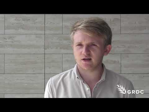 Martin Abell, Precision Decisions, on the 'Hands Free Hectare Project' | GRDC Updates | Western