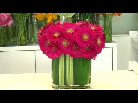 Gerbera Daisy Arrangements : Floral Arrangements