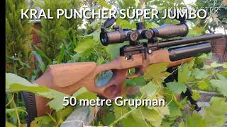 Annihilator tuned Kral Puncher Mega 25cal 75 Yard group with