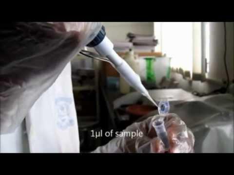 Nano drop spectrophotometer for DNA quantification