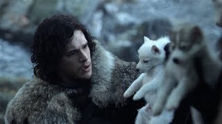 Download Direwolf Pups : Game Of Thrones : S01 E01 Video