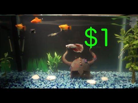 DIY aquarium background!