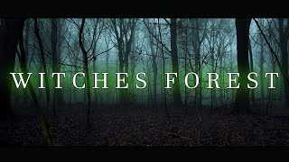 THE WITCHES FOREST   Full Movie