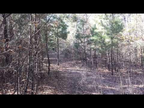 2014 Buzzard Bluff Hunting Extravaganza