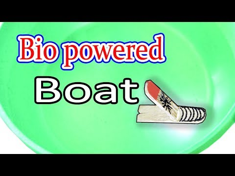 How to make a boat | Bio powered