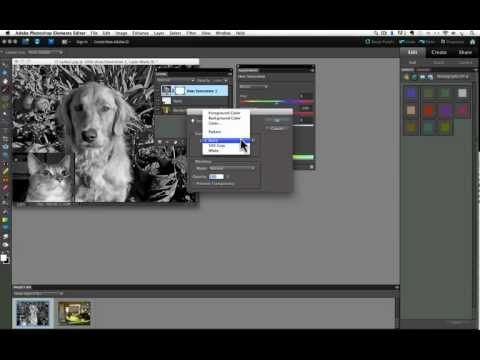 Adjustment Layers in Photoshop Elements Part 1