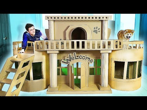 AMAZING HOME FOR PUPPY DOG from CARDBOARD