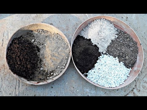 Best soil mix for Succulent Plant (Hindi)