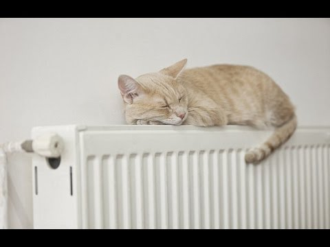10 simple hacks to keep your house warm (and save you money)