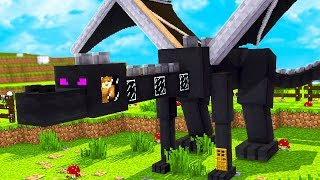 HOW TO LIVE INSIDE AN ENDER DRAGON IN MINECRAFT!