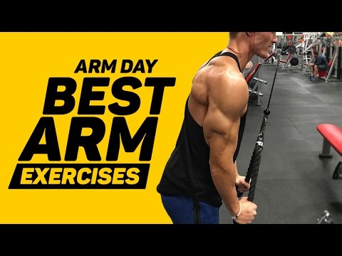 Arm day - Best Arm Exercises (3 bicep, 3 tricep)