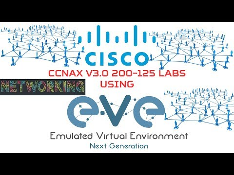 2.2 - Assignment IPv4 to Interfaces and Check Connectivity on EVE-NG