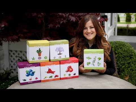 Nature's Blossom Seed Starting Kits 🌱🍅🌲 // Garden Answer