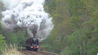 Duchess Slips At Hemerdon , The Great Britain XI , 28th April 2019