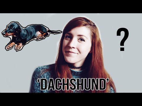 How To Pronounce 'Dachshund'
