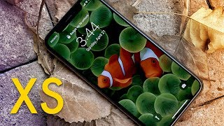 iPhone XS Review — 7 Months Later