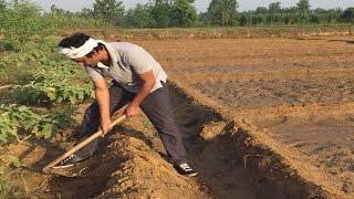 Nawazuddin Siddiqui Doing Farming Instead of Films?