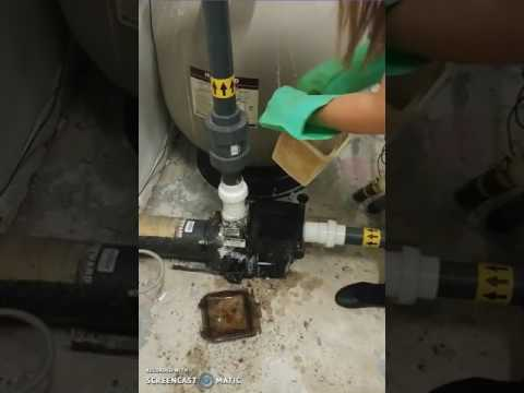How to clean a pump basket