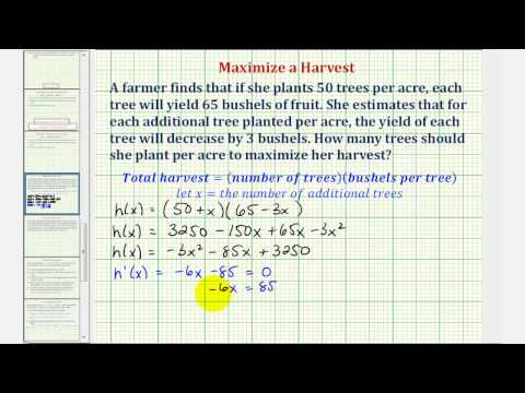 Ex: Optimization - Maximized a Crop Yield (Calculus Methods)