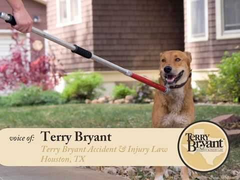 Suing Homeowner's Insurance Company - Texas Dog Bite Attorneys, Terry Bryant