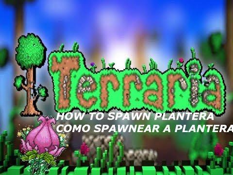 TERRARIA HOW TO SPAWN PLANTERA - COMO SPAWNEAR A PLANTERA