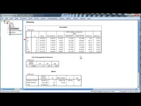 Change Output Font Size in SPSS - Permanently