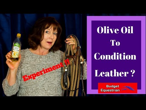 Using Olive Oil To Condition Horse Tack