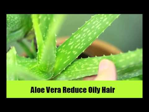 11 Top Home Remedies For Oily Hair