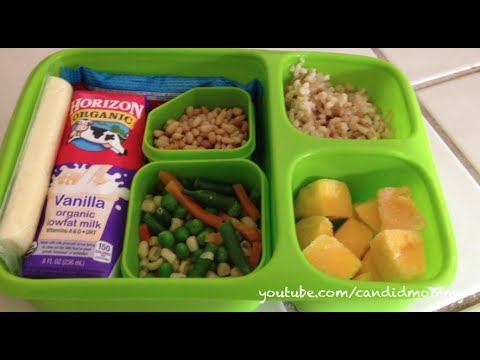 5 Kindergarten Lunches   What Did He Eat?