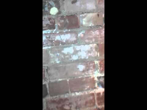 Exposing brick wall under plaster