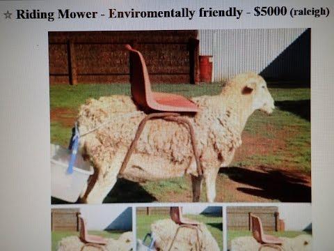 Funny Craigslist Ad  - Environmental Friendly Riding Lawn Mower -    June 26, 2016