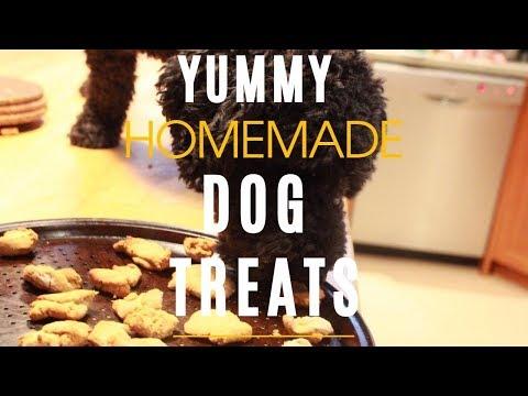 Homemade Dog Treats - Healthy and Yummy!