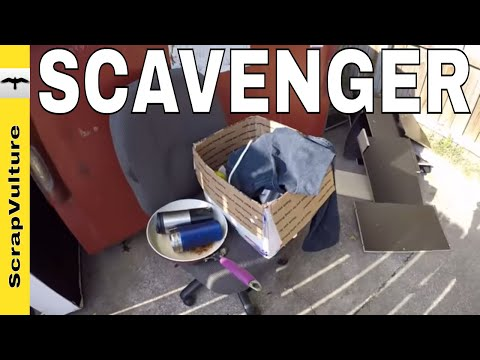 A DAY In The Life of a SCAVENGER - Scrap YARD, Dumpsters, VIDEO Maker