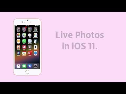 iOS 11 Tip: Live Photos