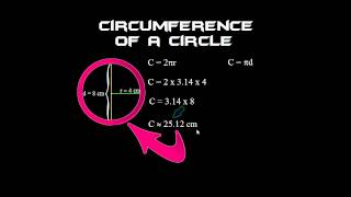 How To Find The Circumference Of A Circle The Easy Way