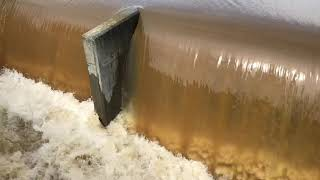 Forest Lake spillway overflows