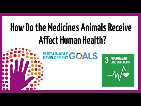 How Do The Medicines Animals Receive Affect Human Health?