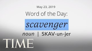 Word Of The Day: SCAVENGER | Merriam-Webster Word Of The Day | TIME