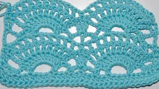 How To Crochet * Big Fan Stitch