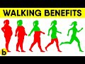 5 Ways Walking Can Help You Lose Weight And Belly Fat