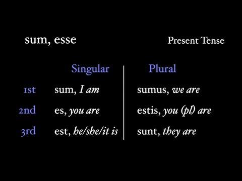 Irregular Verbs: sum, esse