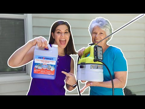 Cleaning with Cordless Sprayer and Wet & Forget