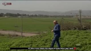 מבט - בעמק יזרעאל לא רוצים את שדה התעופה הבינלאומי הנוסף שהממשלה החליטה להקים ברמת דוד