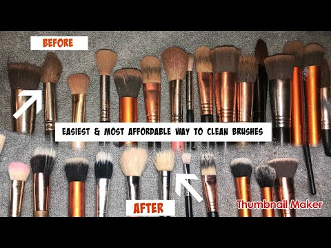 Most AFFORDABLE Way To Clean Brushes! The BEST Product To Use For Makeup Brushes | Jamiiiiiiiie