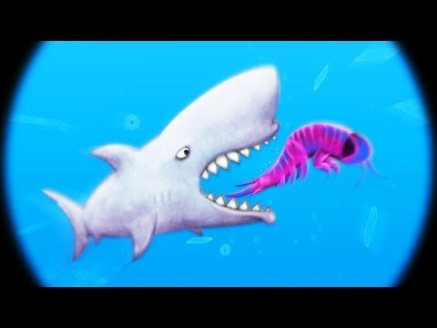 MICROSCOPIC SHARK EXPERIMENT GONE WRONG - Tasty Blue Part 5   Pungence