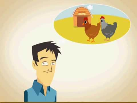 make create chicken coop