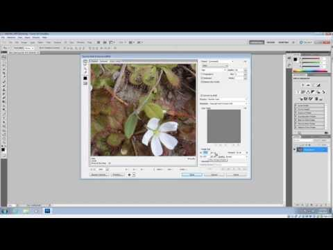 Resize & Optimize Images in Photoshop for Website
