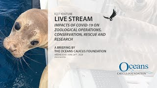 IMPACTS OF COVID-19 ON ZOOLOGICAL OPERATIONS, CONSERVATION, RESCUE AND RESEARCH