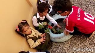Download فعاليات اسبوع الشجرة بروضة حسناء بنت معاويه ١٤٣٩ Video
