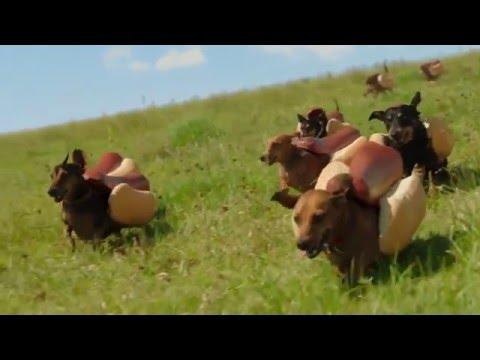 Xxx Mp4 HEINZ Ketchup 2016 Hot Dog Commercial The 39 Wiener Stampede 39 3gp Sex